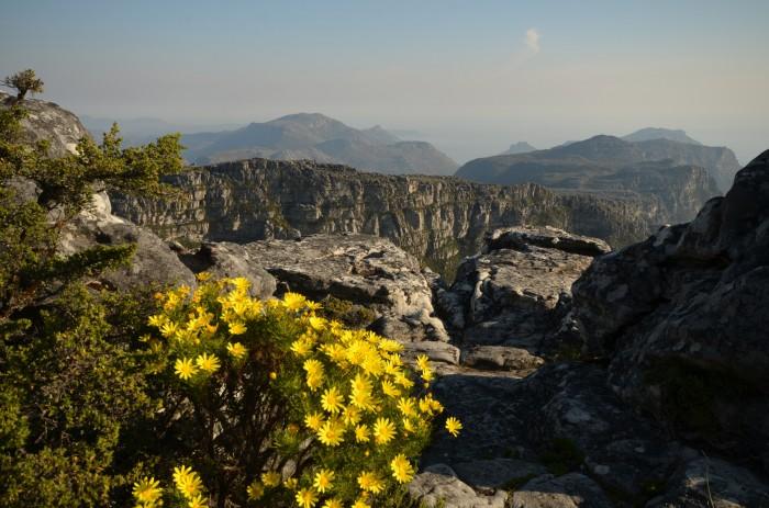 Pohľad zo Stolovej hory, Cape Town (foto: Aďka)