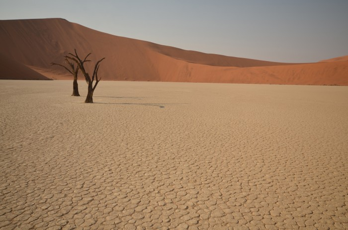 Dedvlei, Namíbia (foto: Oli)