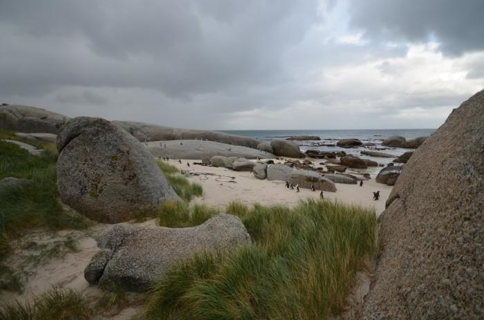Boulders beach (foto: Oli)