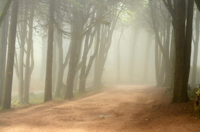 Magická Sintra (foto: Oli)