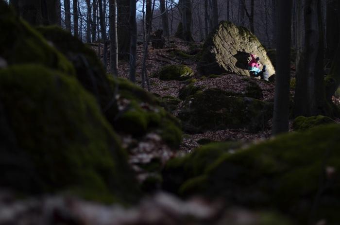 Vráskavec 6B, Džungľa (foto: Adam)