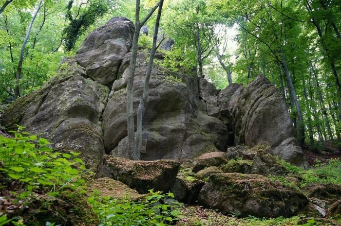 Štúrova skala, Dubník sever (foto: Laco)