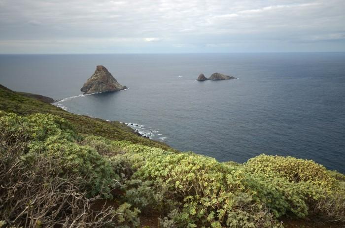 Roques de Anaga (foto: Oli)