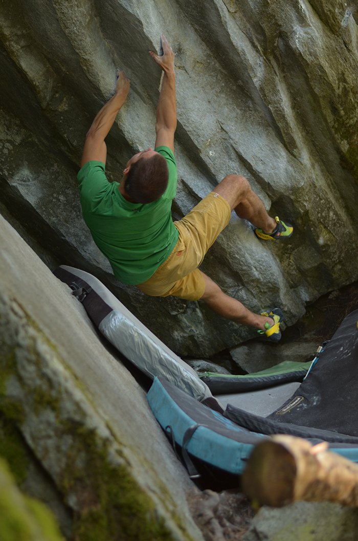 Jack the Chipper 7B+/C