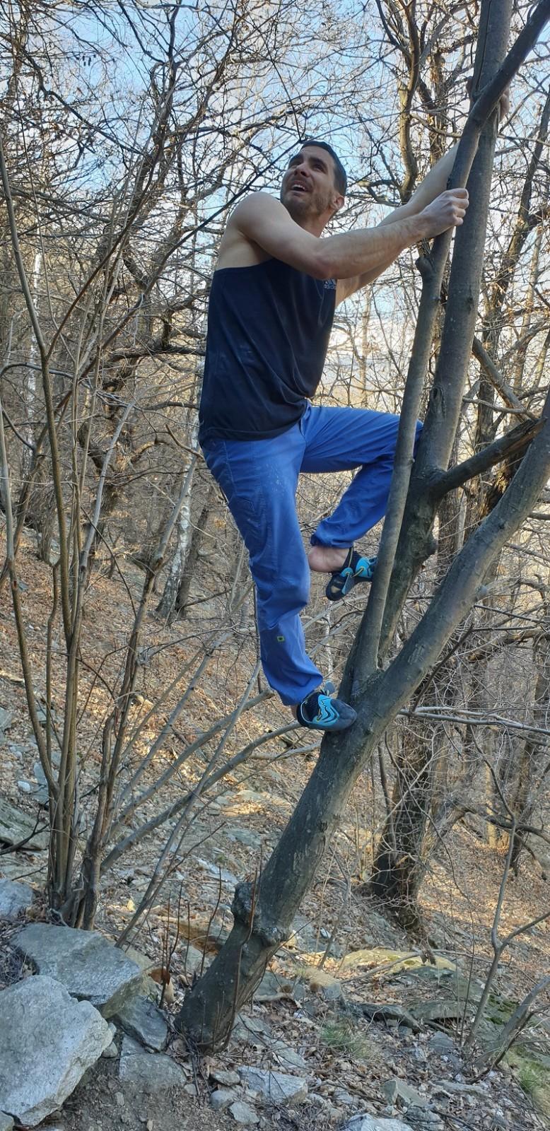 ... a po ňom mal takú radosť mal že z nej vyskočil na strom (v skutočnosti si obzerá, aké sú chyty v tom vysokom výleze).